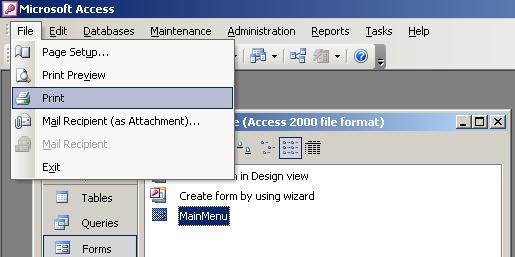 Image of MS Access Custom File Menu